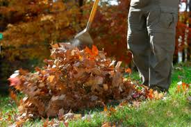 leaf spring cleanup