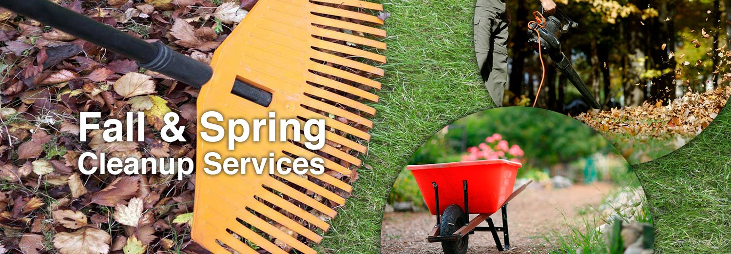 fall_and_spring_cleanup_services