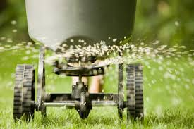 lawn fertilize
